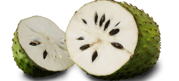 Soursop kills cancer cells in the body