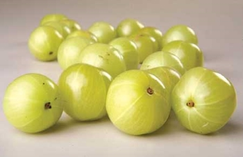 Indian Gooseberry | Amla