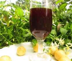 Gooseberry wine recipe | Christmas special wine recipe