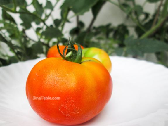 Kerala Style Tomato Pachadi Recipe - തക്കാളി പച്ചടി - Healthy Recipe