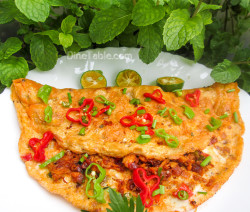 chicken-omelette-recipe