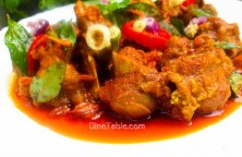 Mutton Rogan Josh / Homemade Curry
