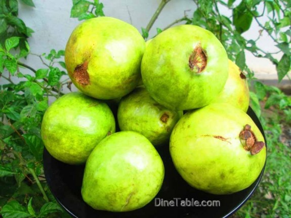 Guava-Fruit