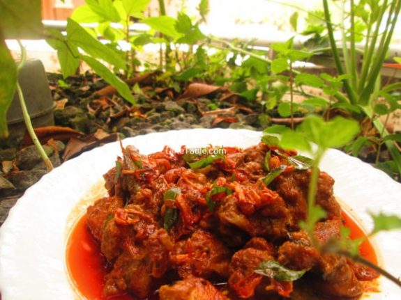Chicken Curry Recipe / Spicy Curry