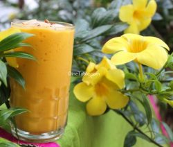 Mango Papaya Smoothie Recipe / Nutritious Smoothie